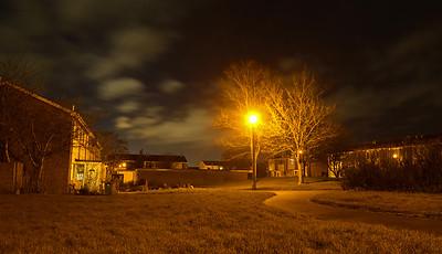 25.01.16 - Evening Light
