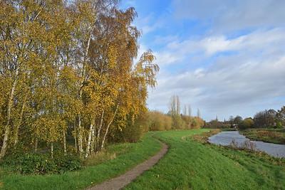 19.11.15 - River Path